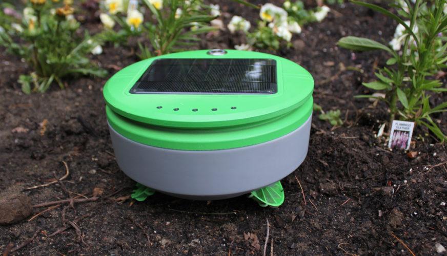 Franklin Robotics bekämpar ogräs med robot