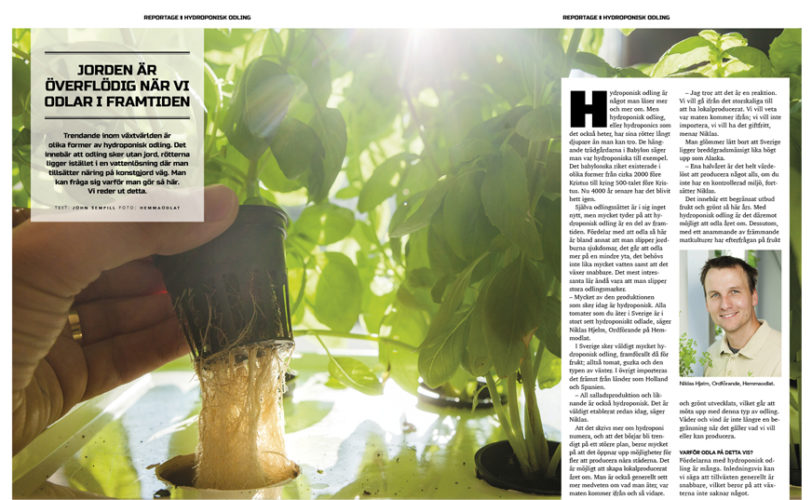 Reportage Hydroponisk odling_ingang
